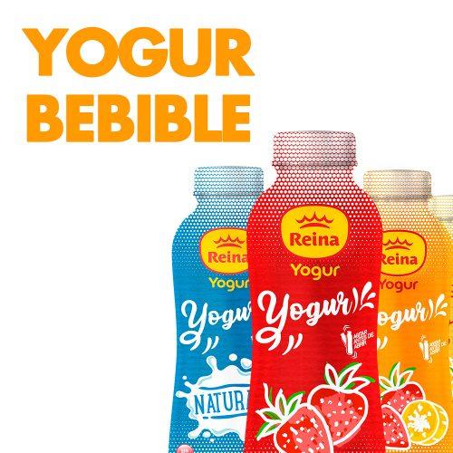 YOGUR-BEBIBLE